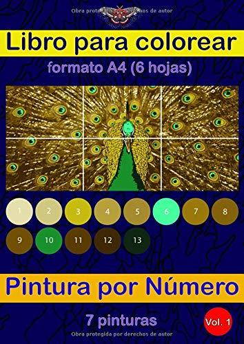 Libro para colorear - Pintura por Número. Formato A4 (6 hojas) - 7 pinturas: Dibuja tu propia pintura.