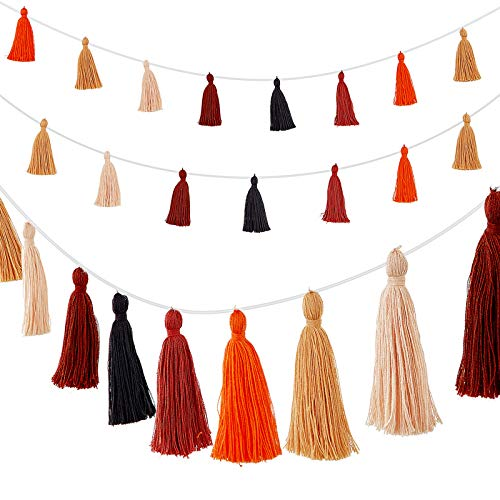 WILLBOND 4 Pieces Thanksgiving Cotton Tassel Garland Thanksgiving Garland Decorations Tassel Banner Decorative Wall Hanging for Fall Autumn Thanksgiving Halloween Party Home Decoration