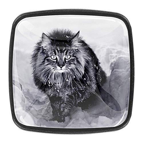 Manopole per comò da 4 pezzi Maniglie quadrate per maniglie con maniglia per viti per armadio da cucina di casa - Un gatto norvegese della foresta nella neve