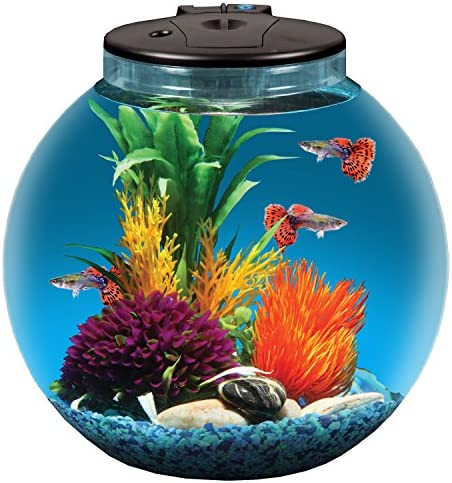 Koller Products AquaView 3 Gallon Fish Tank with Power Filter and LED Lighting product image