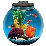 Koller Products AquaView 3-Gallon Fish Tank with Power Filter and LED Lighting