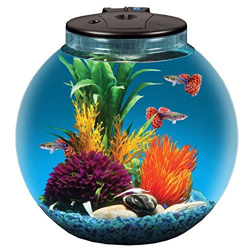Koller Products AquaView 3-Gallon Fish Tank