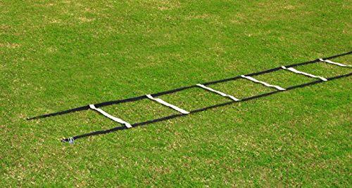 Koordinationsleiter Basic FLACH - 4 m, mit Erdhaken verlängerbar
