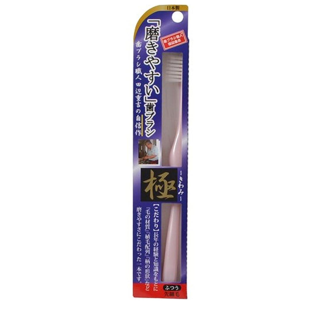 クッション控えるフィット磨きやすい歯ブラシ極 LT-22