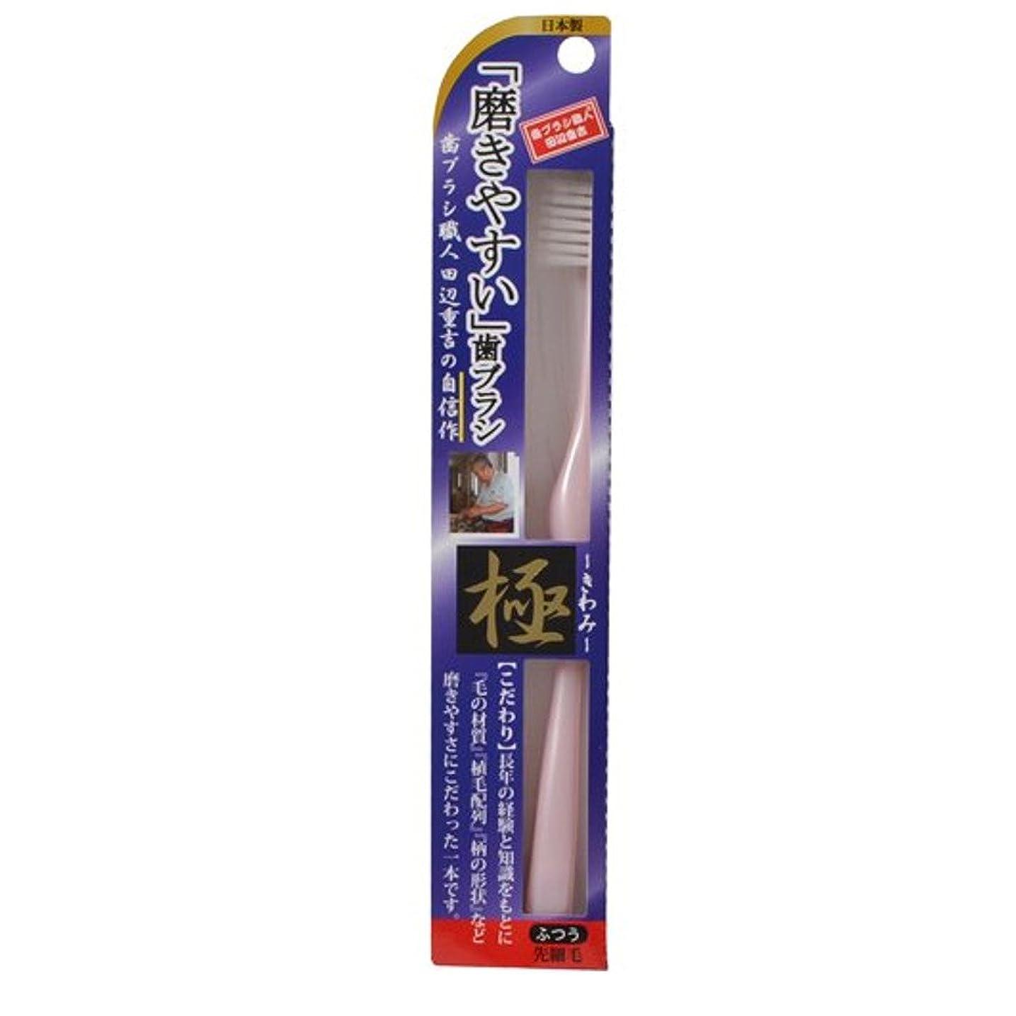 珍味実行可能シャープ磨きやすい歯ブラシ極 LT-22