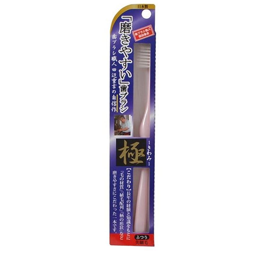 ボーナス記念碑的な何でも磨きやすい歯ブラシ極 LT-22