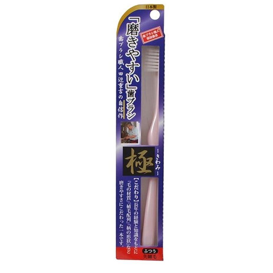 肺投資飢饉磨きやすい歯ブラシ極 LT-22