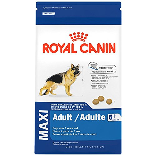 Royal Canin Maxi adult 5+ para perros mayores de 5 años - Envase 4Kg