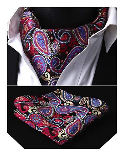 HISDERN Krawattenschal Herren lila rot blau Paisley Blumen Ascot Krawatte Hochzeit Elegant Halstuch und Einstecktuch Set Business