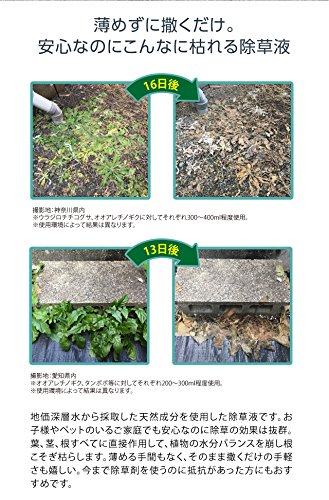 PROIDEA(プロイデア)庭師さんのミネラル除草液