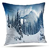 shotngwu Snow Decorative Throw Funda de Almohada Cover, Snow Scene Tree Forest Winter White Grey Landscape Cushion Cover for Bedroom Sofa Living Room 18X18 Inches
