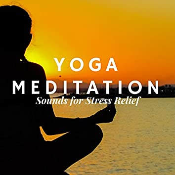 Yoga Meditation -  New Age Relaxing Music for Serenity with Instrumental Songs for a Better Mind, Body and Soul, Nature Sounds for Stress Relief