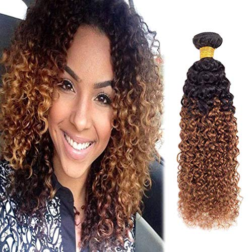 Adette 10 Inches Ombre Brown Bundle 10A 1b/30 Human Hair Bundles 100% Brazilian Virgin Hair Curly Wave Soft Remy Hair Extension for Black Women