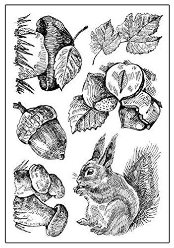 Schmall - Drucken & Stempeln in Eichhörnchen, Größe Small