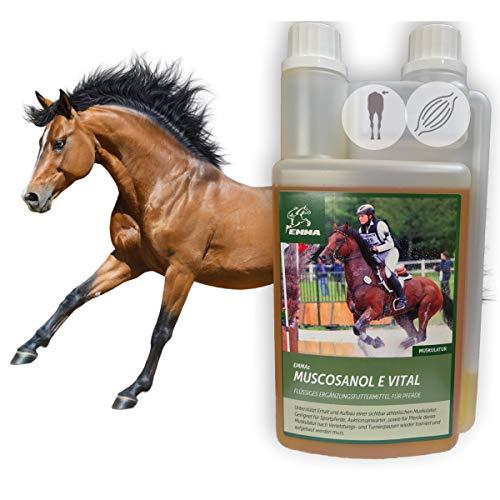 Reiskeimöl + Vitamin E für Pferde I Aufbaufutter I Energie Booster unterstützt Stoffwechsel Muskulatur Muskelaufbau Konditon I Reiskleie Öl Omega 3 Öl I Senior Fohlen Hengst Stuten Sport-Pferd 1L