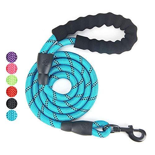 Baomasir 5 FT Hundeleine mit Bequemen Gepolsterten Griff, Starke Reflexnähte der Trainingsleine für Sicherheit Nachts, eignet für Alle Größe Hunde, Blau