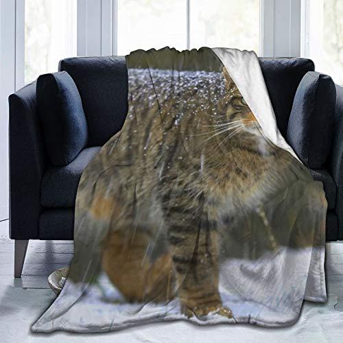 Manta de forro polar de 127 x 152 cm, de jengibre Lynx Cat Snow Nature Home franela suave cálida manta de felpa para cama/sofá/oficina/camping