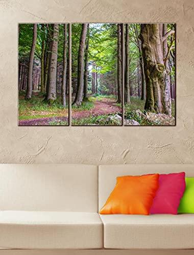 QWASD Lienzo Pintura 3 Partes Bosque Y Arboles Moderna Cuadro Decoración para El Hogar Cuarto De Los Niños Estar Cartel De Pared Abstracto 3 Piezas