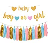 Aonor Gender Reveal Party Decorations - Glitter Letters Baby and Boy or Girl with Hearts Banner, Tissue Paper Tassels Garland Set for Baby Shower Party Decorations