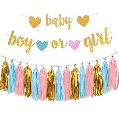 Aonor Gender Reveal Party Decorations  Glitter Letters Baby and Boy or Girl with Hearts Banner Tissue Paper Tassels Garland Set for Baby Shower Party Decorations