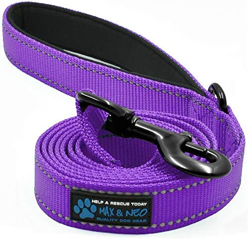 Max and Neo Reflective Nylon Dog Leash We Donate a Leash to a Dog Rescue for Every Leash Sold product image
