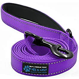 Max and Neo Reflective Nylon Dog Leash – We Donate a Leash to a Dog Rescue for Every Leash Sold (Purple, 6 FT x 1″)
