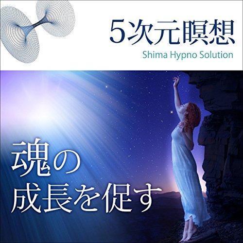 『5次元瞑想 魂の成長を促す』のカバーアート