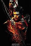Lionbeen Robin Hood Movie Poster Filmplakat 70 X 45 cm
