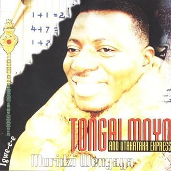 Muridzi Wenyaya