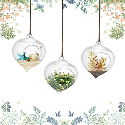 3/verpakking hanglamp glazen vaas borosilicaatglas terrarium planten bloemenvaas bloempot van glas vetplantencontainer 9,3 x 12 cm / 3,7 x 4,7 inch voor hangdecoratie bruiloftsdecoratie om op te hangen en te vullen