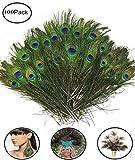 Fashionclub 100pcs Christmas Decor Natural Peacock Tail Eyes Feathers 8'-12'