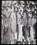 Gerhard Richter, 1988-89