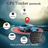IMG-1 gps tracker 3g rete tracciatore
