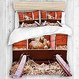 Funda nórdica, juego de funda nórdica con foto de cría de animales de granja con gallina ponedora incubando dentro de la jaula y huevos, cierre de cremallera, juego de funda de cama universal Four Sea