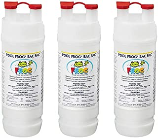 Best frogs in pool filter Reviews