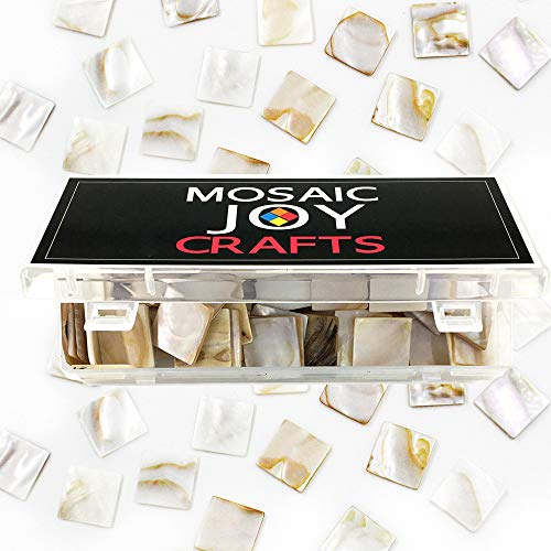 Mosaic Joy 240 Pieces/1 Pound Genuine Mosaic Tiles Mother of Pearl Bulk Mosaic Pieces for Home Decoration DIY Crafts Mosaic Supplies Square Shape 0.8x0.8 inch