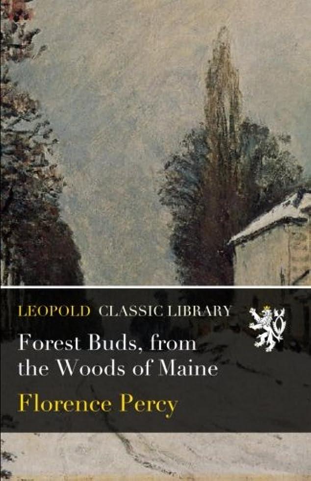 アドバイス熱鍔Forest Buds, from the Woods of Maine