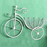 ZLJ Macetero Colgante para Plantas Soportes para Flores de Pared Estante de exhibición con Forma de Bicicleta de Hierro Canasta de Flores pequeña para Colgar en la Pared del balcón de la Sala