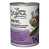 Purina Beyond - Humido para Perro Grain Free Boquillas de paté con Pavo y azúcar, 12 latas de 400 g Cada uno, 12 Unidades de 400 g