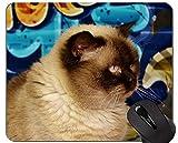 Yanteng Alfombrillas de ratón, Alfombrilla de ratón Original de Encargo del Gato de Pelo Corto, Alfombrilla de ratón británica de Pelo Corto con Borde Cosido
