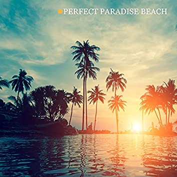 Perfect Paradise Beach: Soothing Ocean Waves