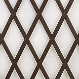 Treplas 0,50x2 m, Marrone, Traliccio Estensibile in PVC per Sostegno a Muro di Fiori e Pia...