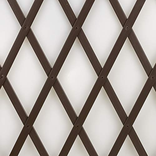Trepls Treillage extensible en PVC 0,50x2 m marron