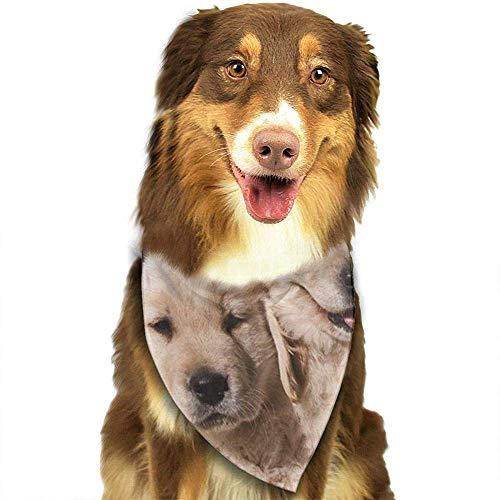 YAGEAD Cane Bandana Cucciolo e Pet Bandane, Cani Cuccioli Golden Retriever Cuccioli Amanti Animali Sciarpa per Animali Domestici