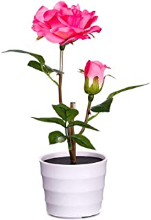 Sencillo Vida Flores Artificiales Rosa de Seda con Luz LED Solar para la Primavera jardín jarrón decoración, Boda, Fiesta, cumpleaños, Aniversario, escaparate (A)