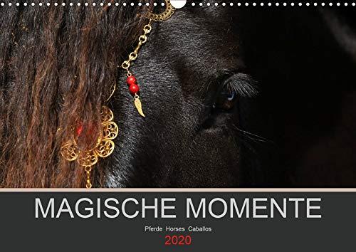 Magische Momente - Pferde Horses Caballos (Wandkalender 2020 DIN A3 quer): Die Magie der Pferde. Fotografien vor schwarzem Hintergrund (Monatskalender, 14 Seiten ) (CALVENDO Tiere)
