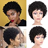 TNICE Short Afro Curly Human Hair Wigs for Black Women Brazilian Virgin Human Hair Wigs Pixie Cut Kinky Curly Short Wigs 150% Density Natural Black Color