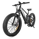 Accolmile Bicicleta Eléctrica Mountain Ebike Fat Tire 26 Pulgadas, Motor Medio BAFANG 48V 750W, Batería Samsung de Iones de Litio 48V 14Ah 672Wh, Shimano 9 velocidades con Pantalla Inteligente