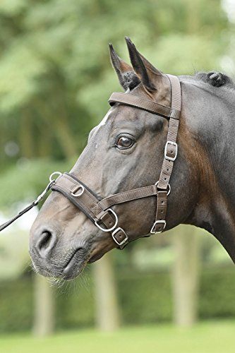 Kappzaum NYLON PRO, Pony, dunkelbraun/Edelstahl
