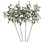 SHACOS Artificial Olive Branches with Fruits Set of 4 Fake Greenery Branches 28 inch Long Olive Stem Plant for Home Wedding Decor (4, 28 inch)
